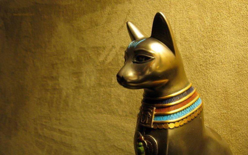 Ancient Cat
